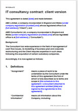 Sample page from the IT consultancy agreement for a client
