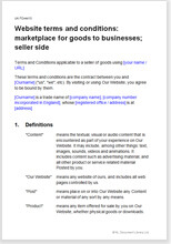 Sample page from the terms for a website B2B marketplace for goods