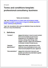 Sample page from the website terms for a consultancy business